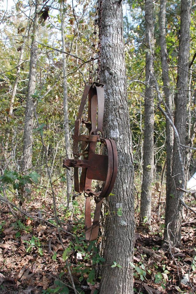 hanging-trap